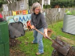 Annie digs compost