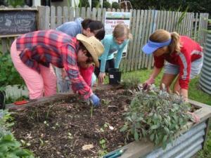 A leek planting demo my the marvelous Margie