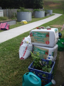 Wow, we have some serious supplies. Thanks Waverley Council and Colleen in particular